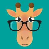 Giraffe avatar wearing glasses Stock Photo