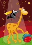 Giraffe with a ball Stock Photo