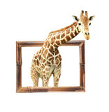 Giraffe in bamboo frame with 3d effect Royalty Free Stock Photo