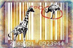 Giraffe barcode animal design art idea Stock Photos
