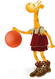 Giraffe the basketball player Stock Images