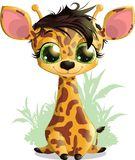 Giraffe. Beautiful little giraffe painted on a white background vector illustration