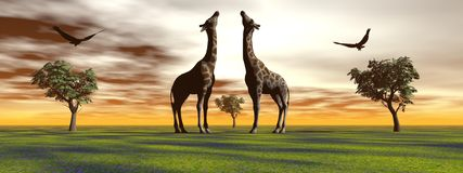 Giraffe and bird and trees Stock Photography
