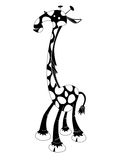 Giraffe - black & white animal series Stock Photos