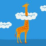 Giraffe on blue sky background Stock Photos