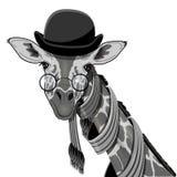 Giraffe in Bowler Hat Royalty Free Stock Image