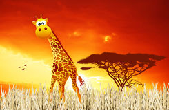 Giraffe in the bush Stock Photography