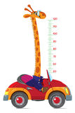 Giraffe on car. Meter wall or height chart Stock Image