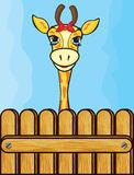 Giraffe card template Royalty Free Stock Images