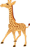 Giraffe cartoon Royalty Free Stock Images