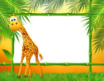 Giraffe cartoon Stock Photo