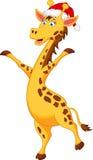 Giraffe cartoon with christmas hat Stock Photography