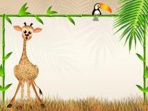Giraffe cartoon Royalty Free Stock Image