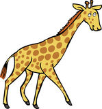 A cartoon Giraffe. A cartoon illustration of a friendly giraffe Stock Photos