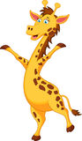 Giraffe cartoon standing. Illustration of Giraffe cartoon standing Royalty Free Stock Photography