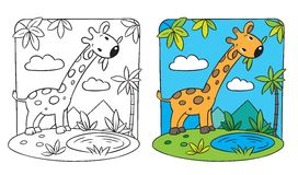 Giraffe. Coloring book. Coloring picture of giraffe on a green lawn Stock Image