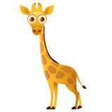 Giraffe cute cartoon character Stock Photos