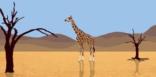 Giraffe dans le désert illustration stock