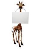 Giraffe de dessin animé retenant le signe blanc. Images libres de droits