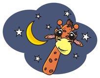 Giraffe, die unter den Sternen späht Stockfotos
