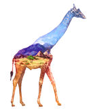 Giraffe double exposure illustration Stock Image