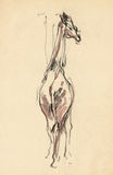 Giraffe, drawing 4 Stock Photography