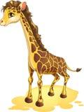 Giraffe. Drawn on a white background Royalty Free Stock Photo