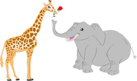 Giraffe and elephant. Animal couple for valentine card Royalty Free Stock Photography