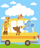 Giraffe. Elephant. Dog. Animals On The Yellow Bus. Funny Animals Party. Stock Photos