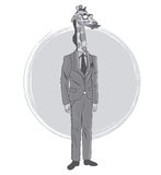 Giraffe fashion animal hipster white and grey design Royalty Free Stock Image