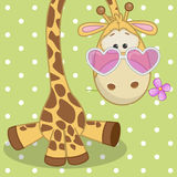 Giraffe with flower Stock Photo