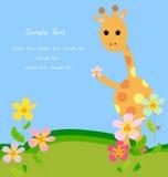 Giraffe and flower Stock Images