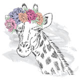 Giraffe in a flower wreath. Stock Photo