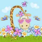Giraffe with flowers Royalty Free Stock Images