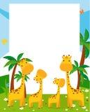 Giraffe and frame Stock Photos