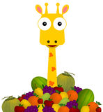 Giraffe in fruits Stock Images