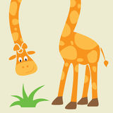 Giraffe - funny cartoon greeting card. Illustration of funny giraffe with long neck Stock Photo