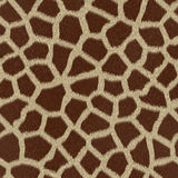 Giraffe fur. (skin) background or texture Stock Photos
