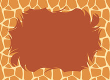 Giraffe Fur Border Stock Photos