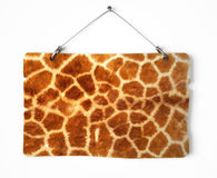 Giraffe fur notice board Stock Images