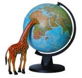 Giraffe with globe Stock Photography