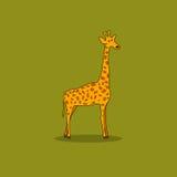 Giraffe  on a Green Background Stock Photo