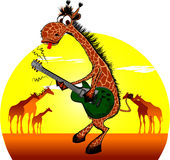 Giraffe with a guitar. Giraffe plays guitar on the background of the rising sun Stock Photos
