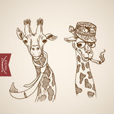 Giraffe head hipster style engraving lineart vintage vector Stock Images