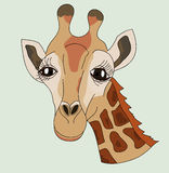 Giraffe head. An illustration of a giraffe with big eyes Stock Photos
