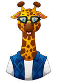 Giraffe hipster in a jacket and sunglasses Royalty Free Stock Photos