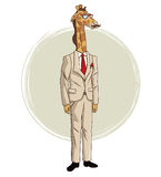 Giraffe hipster style with beige suit red tie mustache and glasses Royalty Free Stock Photos
