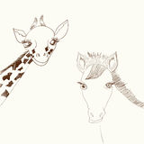 Giraffe and horse Royalty Free Stock Photo