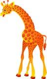 Giraffe. Illustration de vecteur   Photo stock