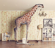 Giraffe  in the living room Royalty Free Stock Images